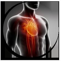 Scintigraphie Cardiaque Les Cedres Centre De Medecine Nuclaire